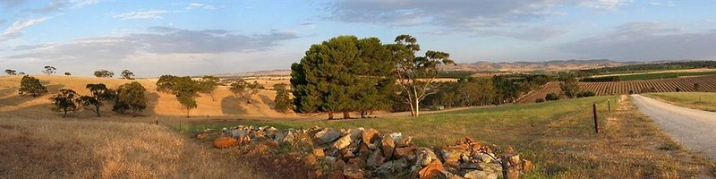 abbotsford-country-house-australia-australia-poludniowa-barossa-valley-widok.jpg
