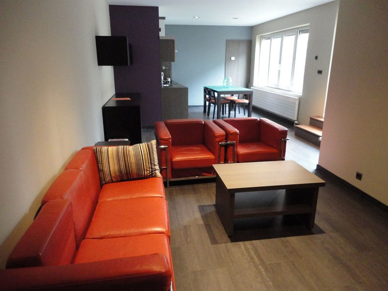 apart-hotel-brussels-wellness-belgia-bruksela-i-okolice-bruksela-budynki.jpg
