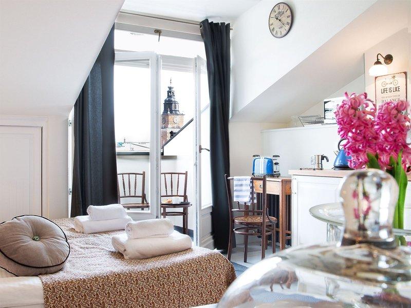 antique-apartments-plac-szczepanski-polska-polska-widok-z-pokoju.jpg