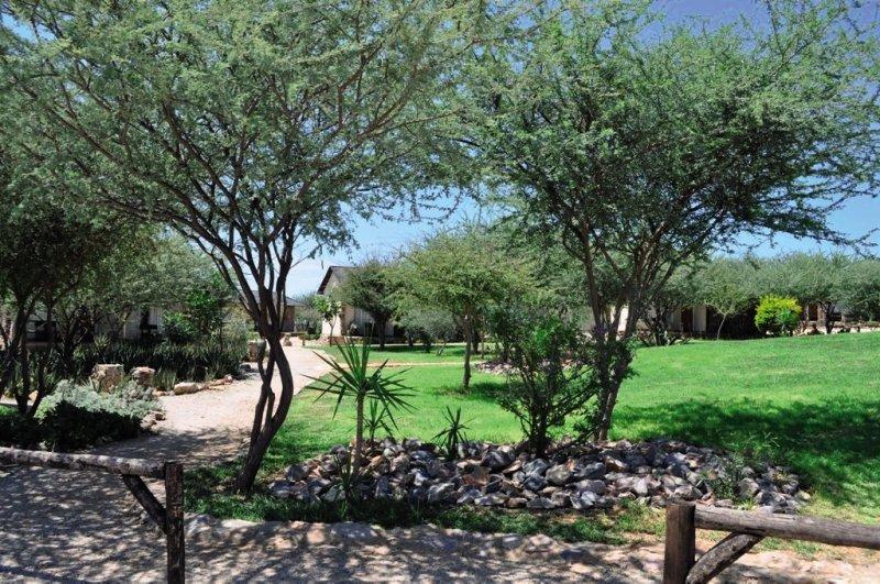 etotongwe-lodge-etotongwe-lodge-namibia-bar.jpg