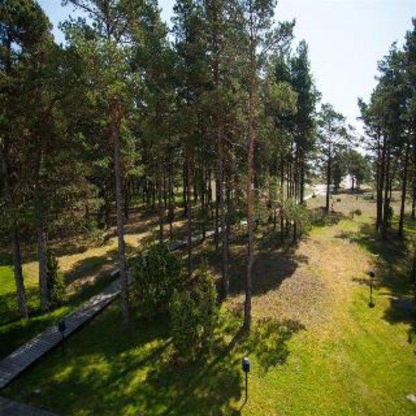 spa-hotel-saaremaa-valss-estonia-estonia-kuressaare-bufet.jpg