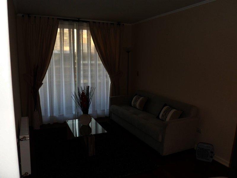 agustina-suite-chile-chile-widok-z-pokoju.jpg
