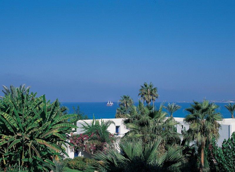 azia-resort-spa-cypr-cypr-zachodni-ogrod.jpg