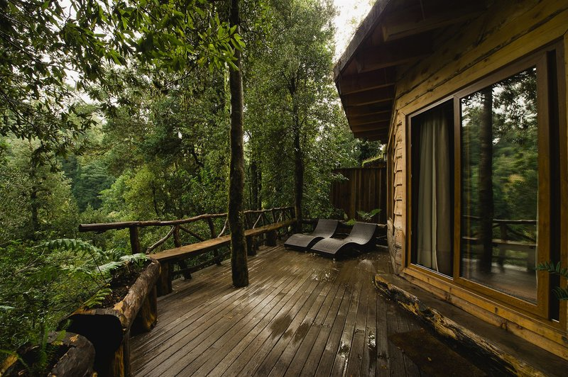 nawelpi-lodge-chile-chile-panguipulli-restauracja.jpg