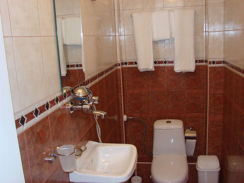 avel-guest-house-bulgaria-sofia-i-okolice-sofia-widok.jpg