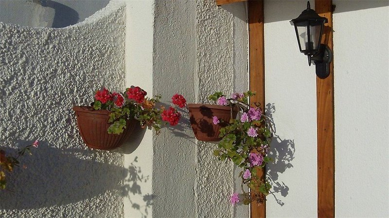 posada-bellamare-chile-ogrod.jpg
