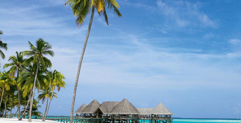 gili-lankanfushi-malediwy-atol-nord-male-nord-male-atoll-lobby.jpg