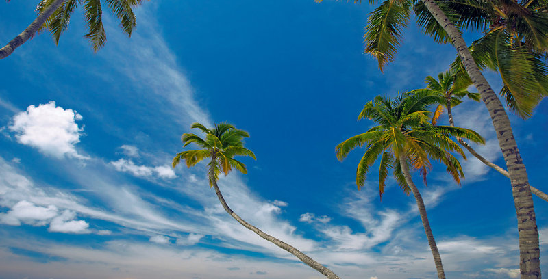 gili-lankanfushi-malediwy-morze.jpg