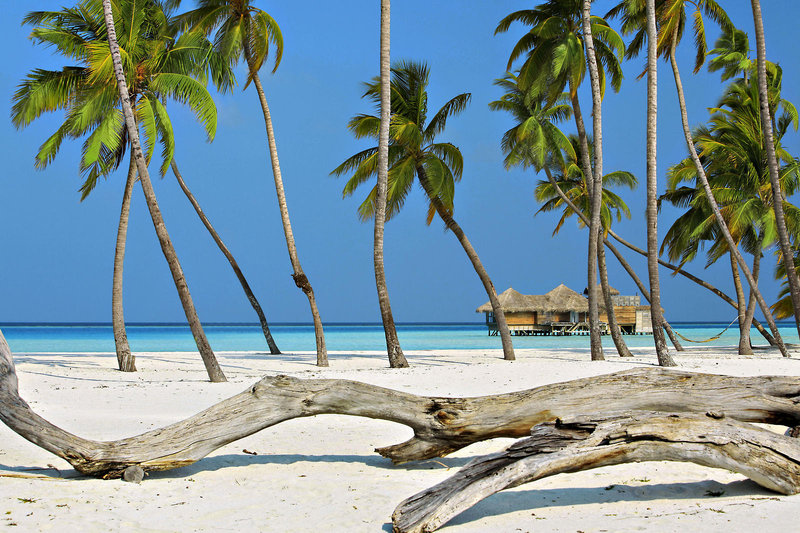 soneva-gili-malediwy-atol-nord-male-nord-male-atoll-sport.jpg