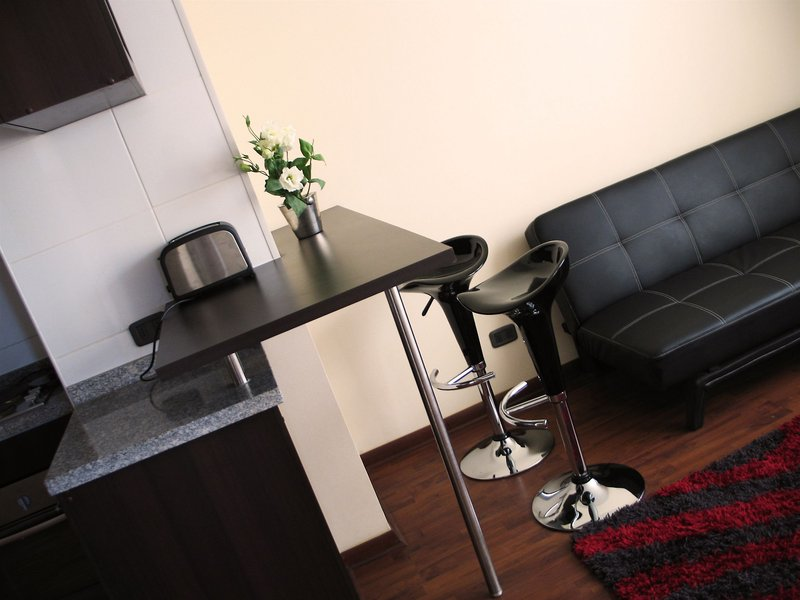 santiago-furnished-apartments-chile-chile-basen.jpg