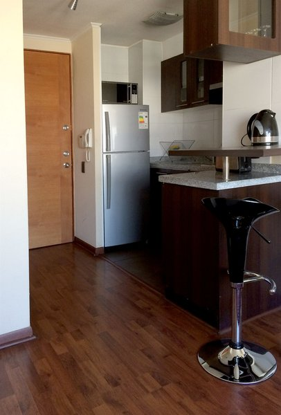 santiago-furnished-apartments-chile-chile-morze.jpg