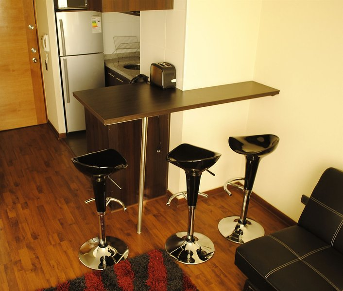 santiago-furnished-apartments-chile-chile-santiago-de-chile-widok-z-pokoju.jpg