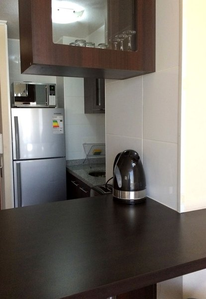 santiago-furnished-apartments-chile-ogrod.jpg