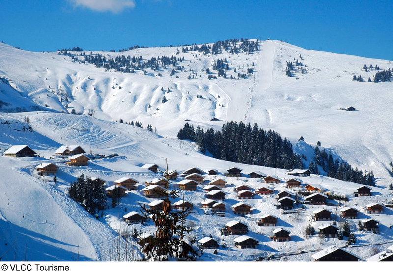 alpadze-lou-kra-szwajcaria-ogrod.jpg