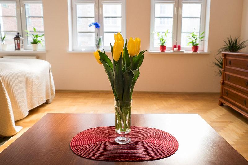 apartamenty-vns-polska-polnocne-wybrzeze-polski-recepcja.jpg