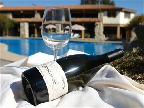 casablanca-spa-wine-chile-pokoj.jpg