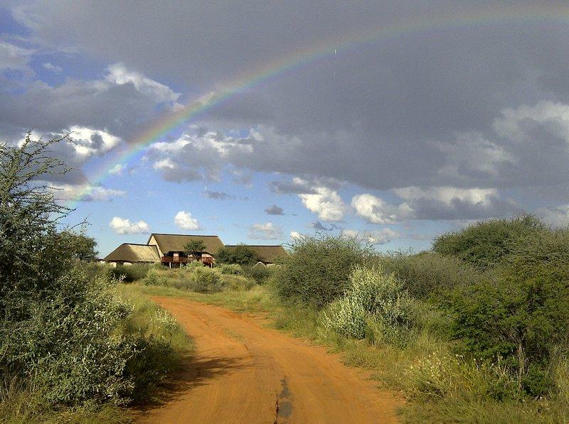 west-nest-lodge-namibia-bufet.jpg