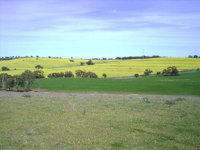 Booleroo View Bed and Breakfast
