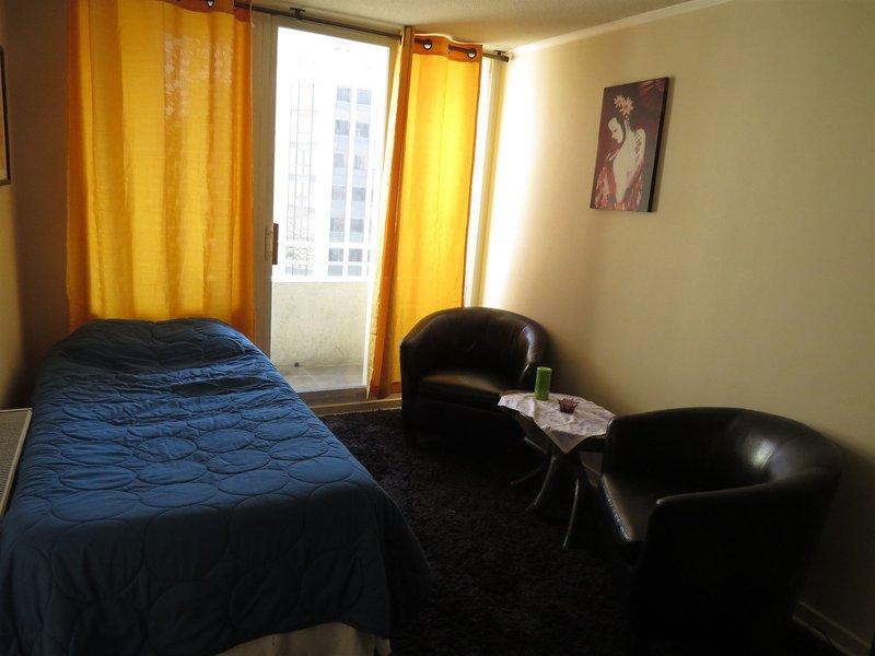 apartamentos-vr-suite-chile-chile-ogrod.jpg