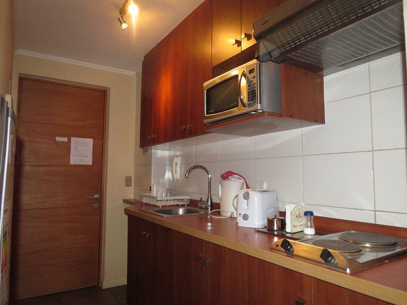 apartamentos-vr-suite-chile-chile-santiago-de-chile-ogrod.jpg