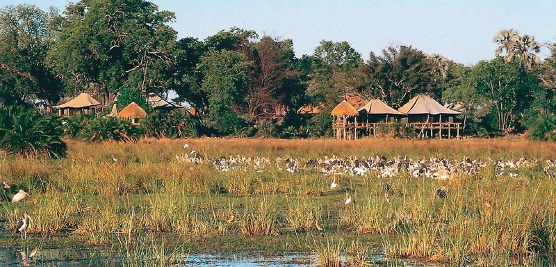 mombo-camp-botswana-budynki.jpg