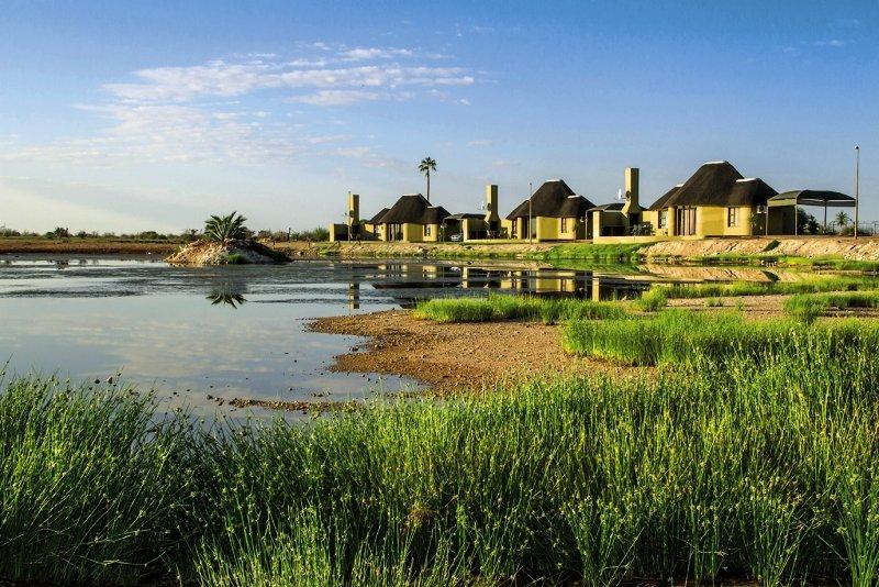 lapa-lange-namibia-namibia-rozrywka.jpg