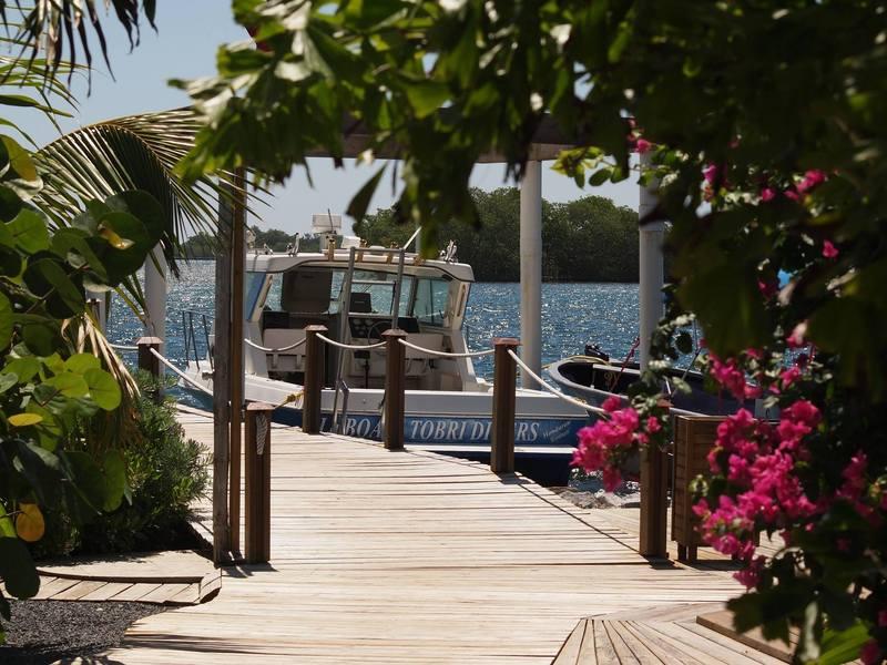 tobri-divers-resort-honduras-honduras-dixon-cove-morze.jpg
