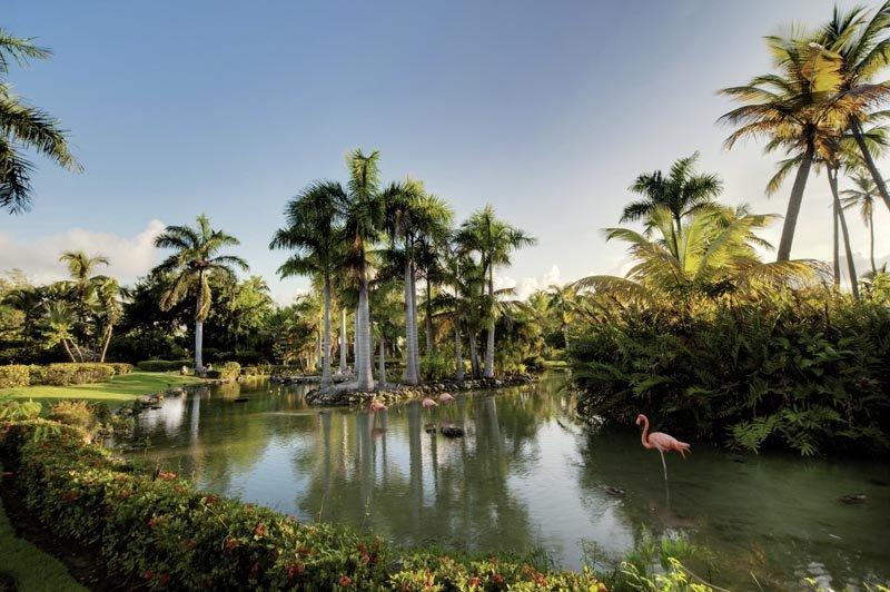 melia-caribe-tropical-dominikana-dominikana-bavaro-punta-cana-bufet.jpg