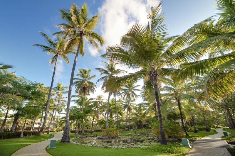 melia-caribe-tropical-dominikana-wschodnie-wybrzeze-bavaro-punta-cana-widok.jpg
