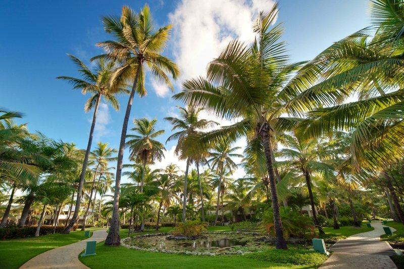 melia-caribe-tropical-melia-caribe-tropical-wschodnie-wybrzeze-wschodnie-wybrzeze-budynki-bufet.jpg