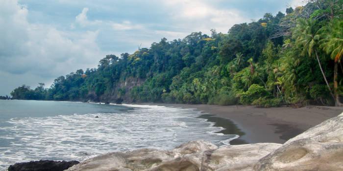 casa-corcovado-jungle-lodge-casa-corcovado-jungle-lodge-kostaryka-kostaryka-pokoj.jpg