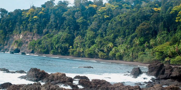 casa-corcovado-jungle-lodge-casa-corcovado-jungle-lodge-kostaryka-kostaryka-recepcja.jpg