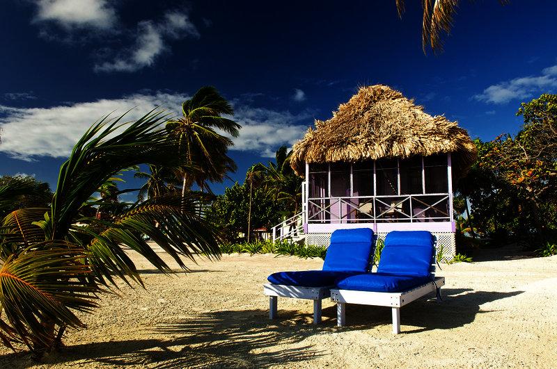 blackbird-caye-resort-belize-belize-turneffe-atoll-ogrod.jpg