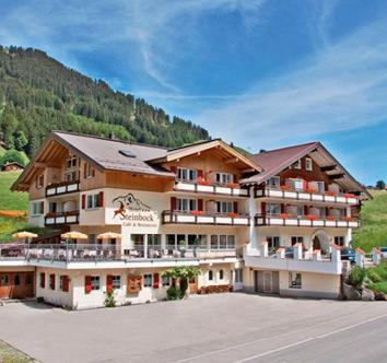 steinbock-bergerlebnisse-im-kleinwalsertal-austria-vorarlberg-ogrod.jpg