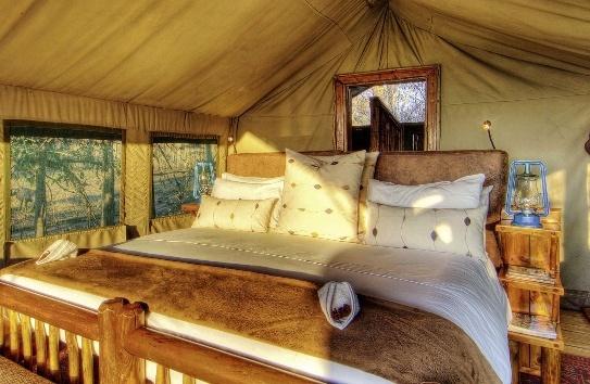camp-xakanaxa-botswana-park-narodowy-okavango-delta-ogrod.jpg